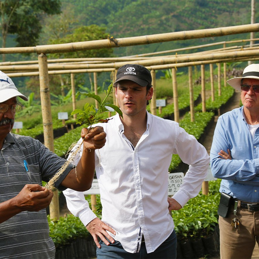 Farmers of Colombian Exotic Coffee